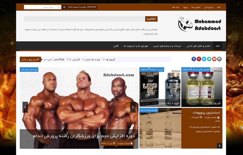 وب سایت شخصی محمد ادبدوست adabdost21  نمونه طراحی وب سایت adabdost21