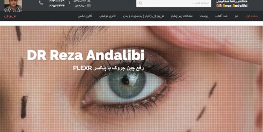 وب سایت شخصی دکتر عندلیبی dr andalibi demo 1 540x272
