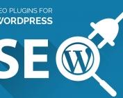 طراحی وب سایت رایان سما   طراحی وب سایت حرفه ای   فروش هاست دامنه 5 Best SEO Plugins for WordPress 2016 177x142